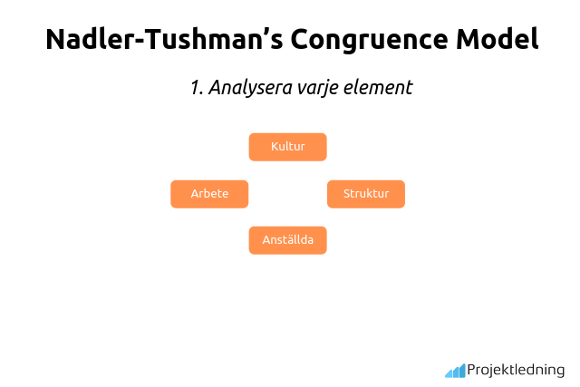 Nadler-Tushman's Congruence Model Analysera varje element
